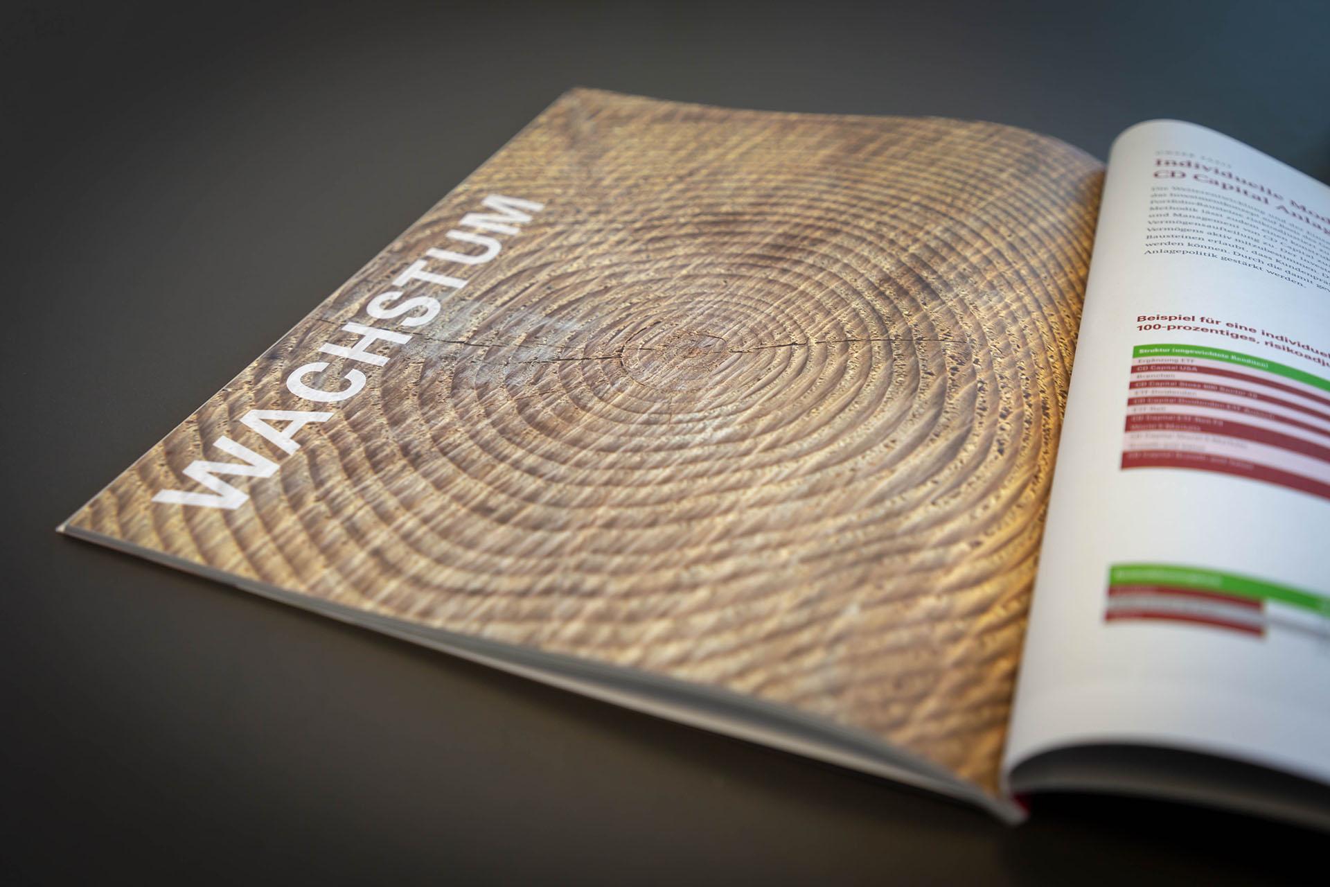 cd capital investment compendium 02 - Diskreter Auftritt mit auffallend schöner Broschüre – Corporate Design, Grafikdesign, Kommunikationsdesign, Branding, Markenentwicklung, Editorial Design
